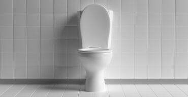 evolução do vaso sanitário